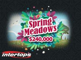 intertops_casino_prepares_cash_awards_with_prize_pool_of_$240,000